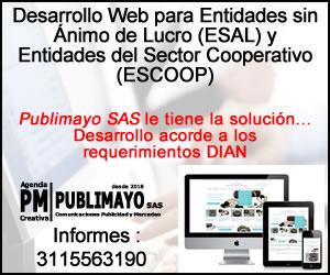 Desarrollo Web - Entidades sin Ánimo de Lucro - ESAL